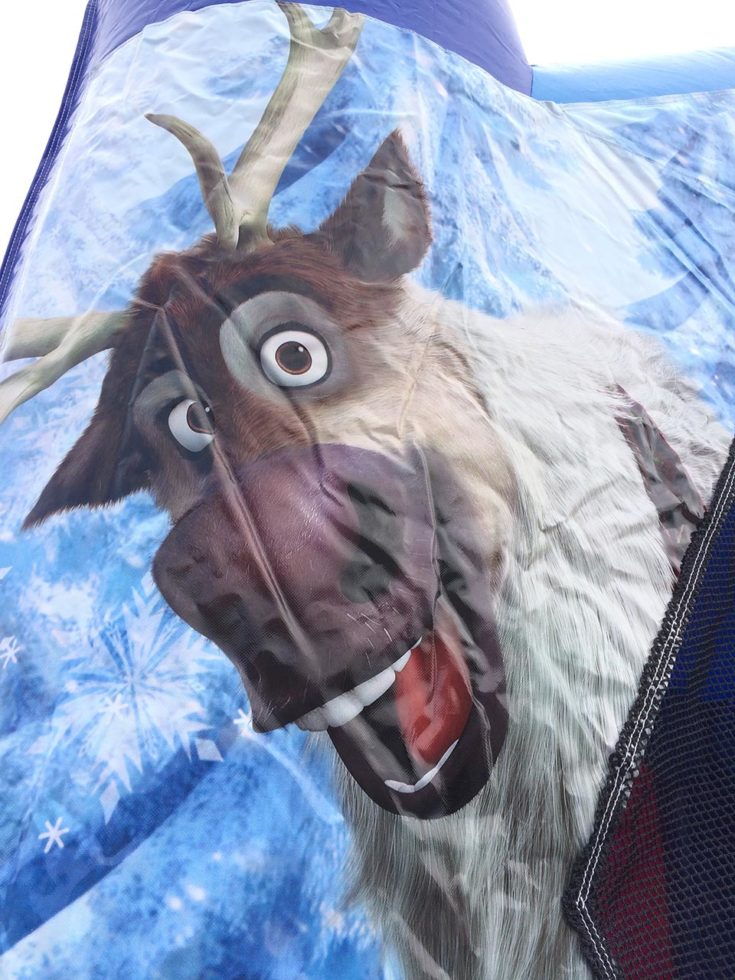 Frozen Bounce House Sven Closeup