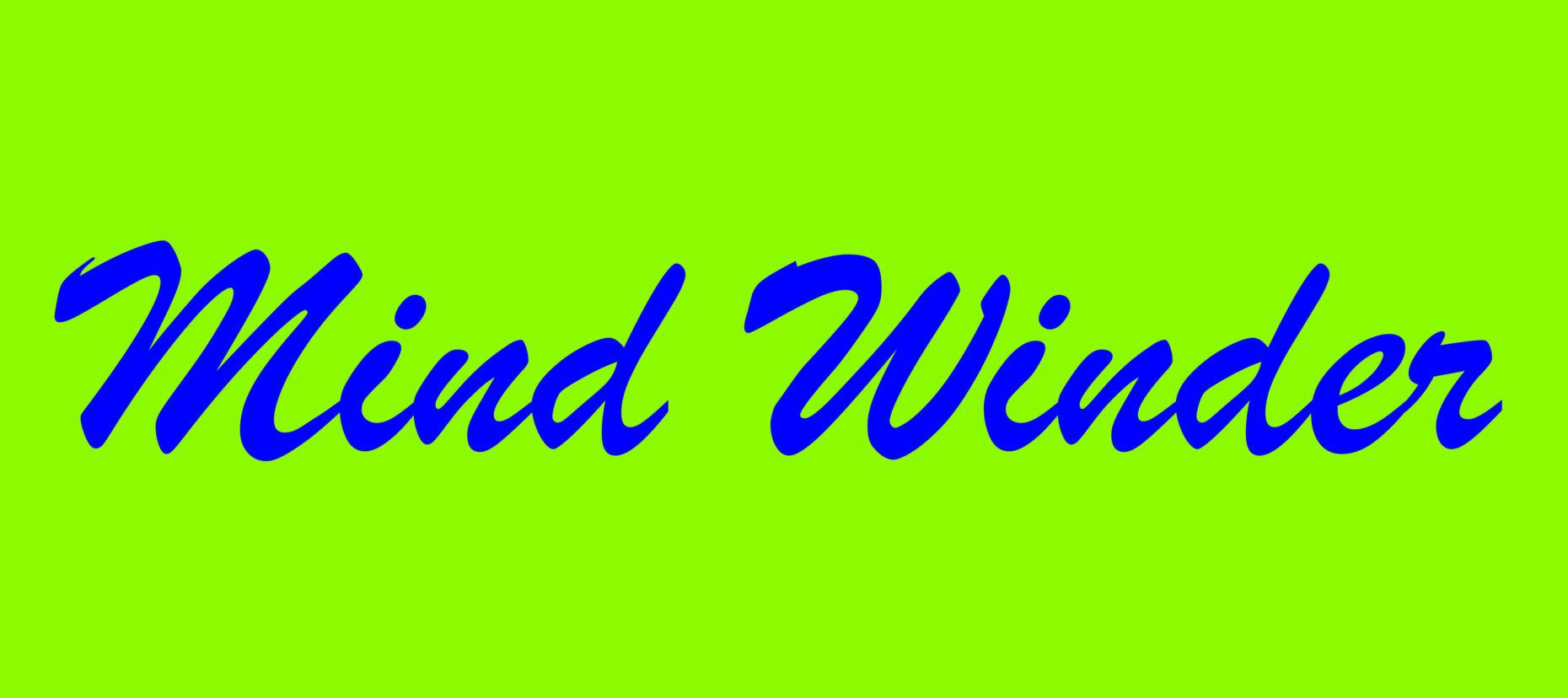 Mindwinder teaser